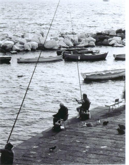 Naples fishermen and their cats